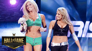 Torrie Wilson announced for WWE Hall of Fame
